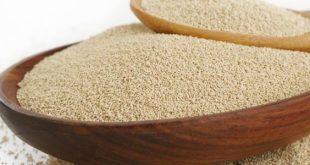 بالخطوات كيفية استخدام مخبز الخمير للخبز والفطاير